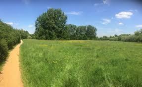 Roxborne Park