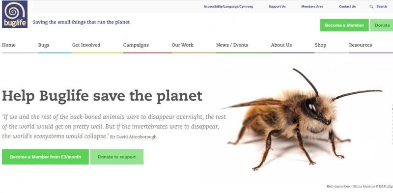 Buglife