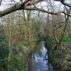 River pinn open space