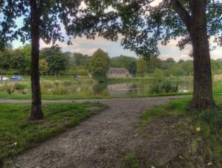 Lake Grove