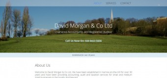 David Morgan & Co