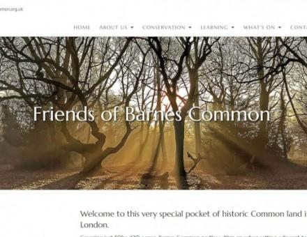 Barnes Common