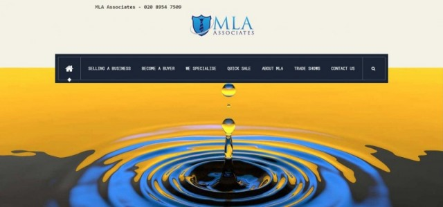 M L A Associates
