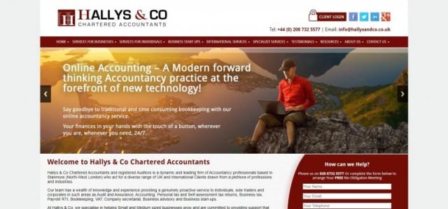 Hallys & Co, Chartered Accountants